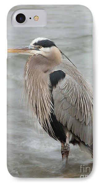 IPhone Case featuring the photograph Great Blue Heron by Doug Herr