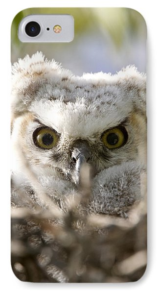 Great Horned Owl Babies Owlets In Nest Phone Case by Mark Duffy