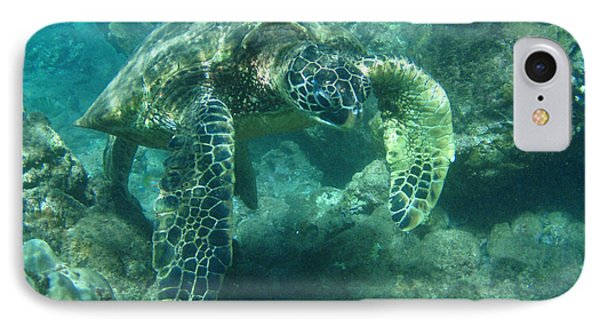 Green Sea Turtle Hawaii Phone Case by Bob Christopher