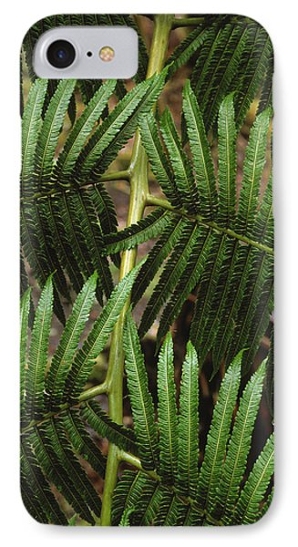 Hapu'u Fern Phone Case by G. Brad Lewis