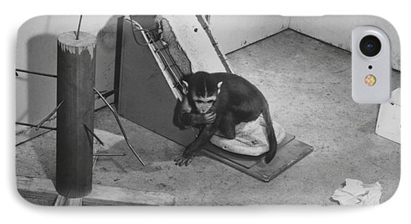 Harlow Monkey Experiment Phone Case by Science Source