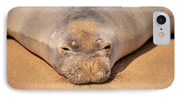 Hawaiian Monk Seal Phone Case by Dave Fleetham - Printscapes