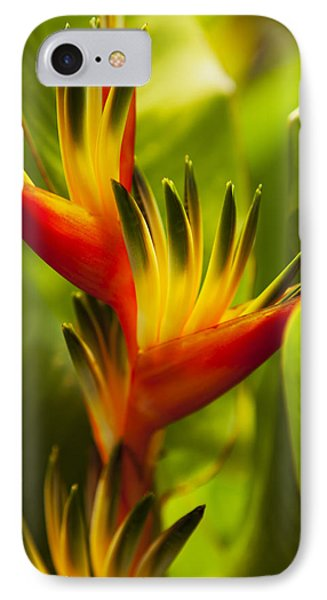 Heliconia Phone Case by Dana Edmunds - Printscapes