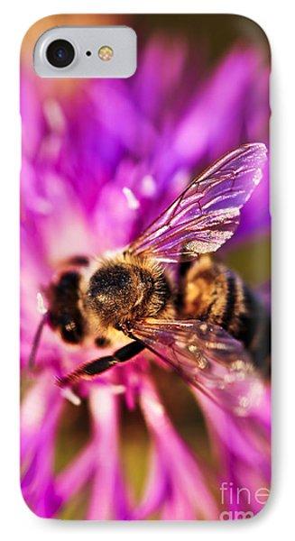 Honey Bee  Phone Case by Elena Elisseeva