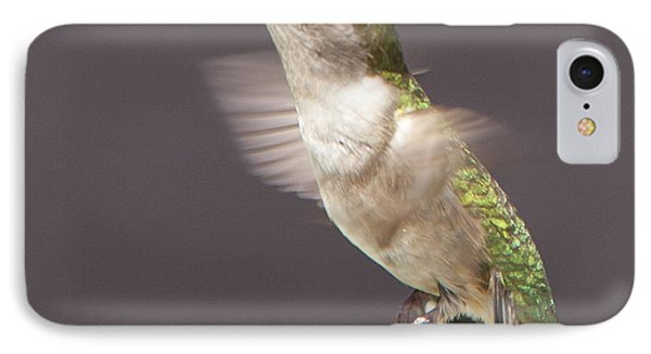 Hummingbird IPhone Case by John Crothers