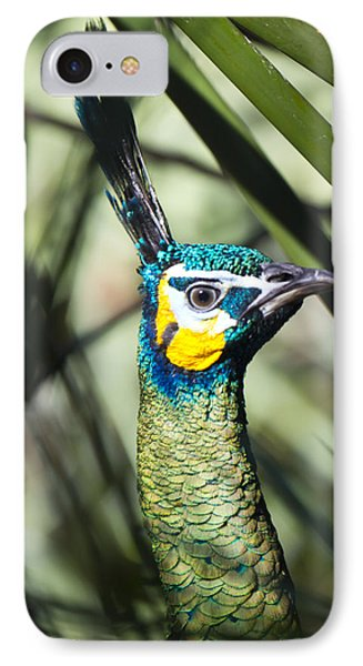 I Am Looking At You Too Phone Case by Nicholas Evans