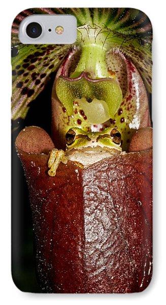 Kangaroo Frog IPhone Case by Jean Noren