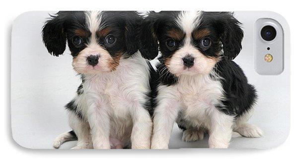 King Charles Spaniel Puppies Phone Case by Jane Burton