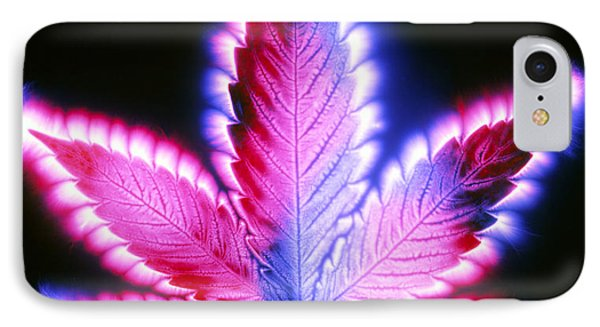 Kirlian Photograph Of A Leaf Of Cannabis Sativa Phone Case by Garion Hutchings
