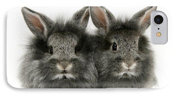 Lionhead Rabbits Phone Case by Jane Burton