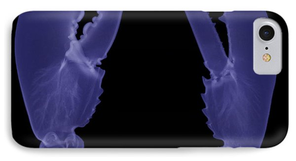 Lobster Claws X-ray Phone Case by Ted Kinsman