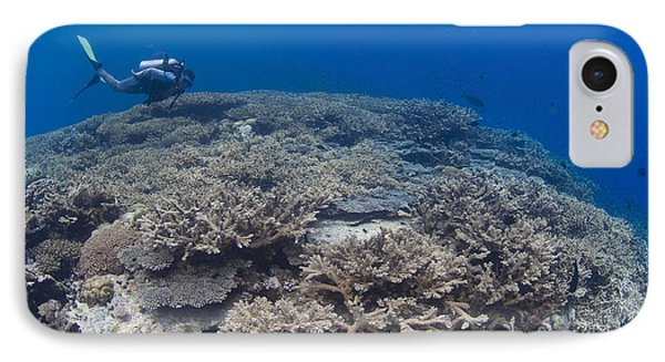 Masses Of Staghorn Coral, Papua New Phone Case by Steve Jones