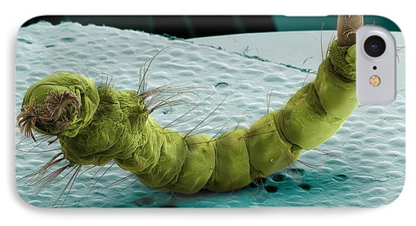 Mosquito Larva, Sem Phone Case by Ted Kinsman
