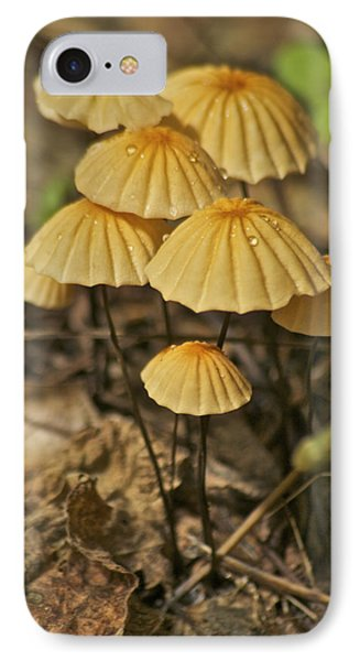 Mushrooms Phone Case by Michael Peychich