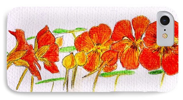 IPhone Case featuring the drawing Nasturtiums by Barbara Moignard