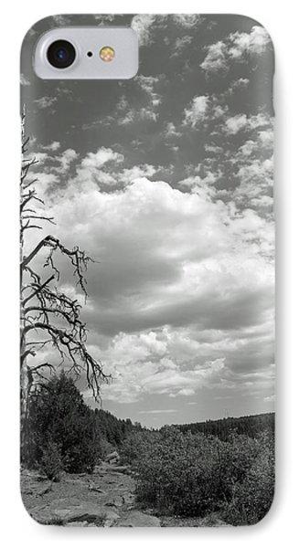 Oak Creek Canyon IPhone Case by Lauri Novak