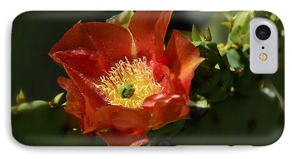 Orange Prickly Pear Blossom  Phone Case by Saija  Lehtonen