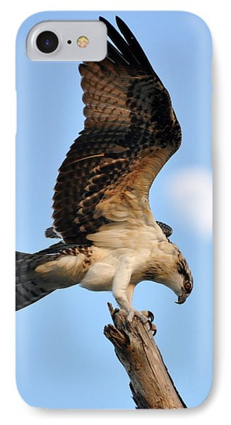 IPhone Case featuring the photograph Osprey In Flight by Rick Frost