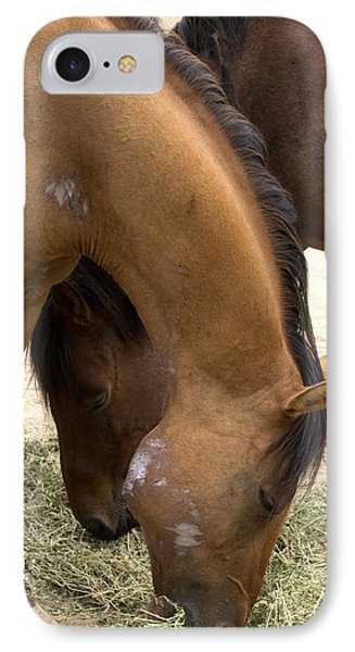 IPhone Case featuring the photograph Parallel Ponies by Lorraine Devon Wilke