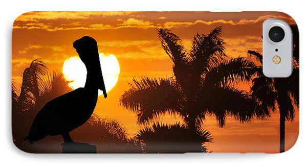 Pelican At Sunset Phone Case by Dan Friend