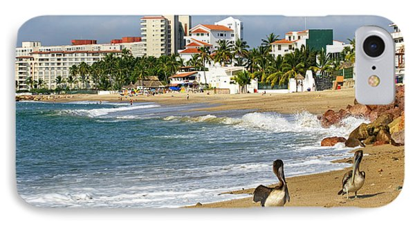 Pelicans On Beach In Mexico IPhone Case by Elena Elisseeva