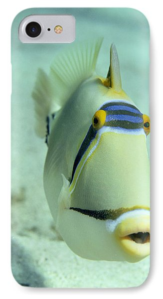 Picasso Triggerfish Phone Case by Georgette Douwma