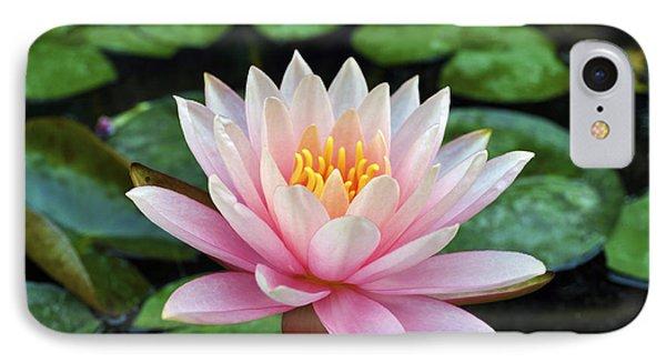 Pink Lotus Phone Case by Sumit Mehndiratta
