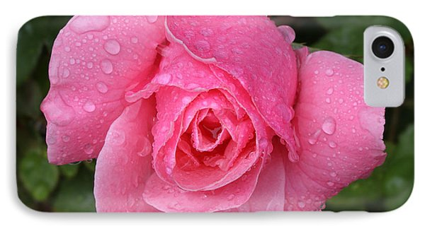 Pink Rose Macro Shot With Rain Drops IPhone Case by Nicholas Burningham