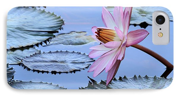 Pink Water Lily Phone Case by Sabrina L Ryan