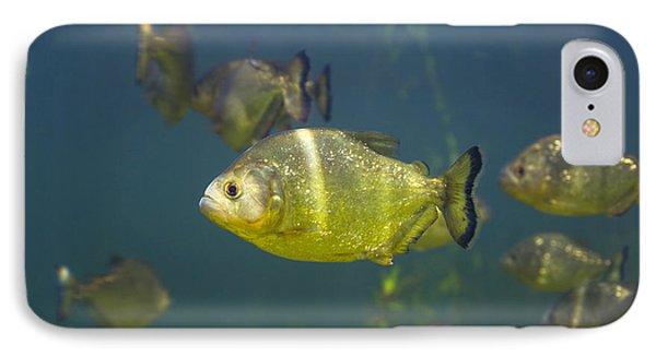 Piranhas Phone Case by Peter Scoones