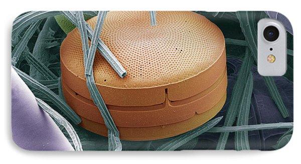 Planktonic Diatom Alga, Sem Phone Case by Steve Gschmeissner
