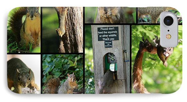 Please Don't Feed The Squirrels Phone Case by Elizabeth Hart