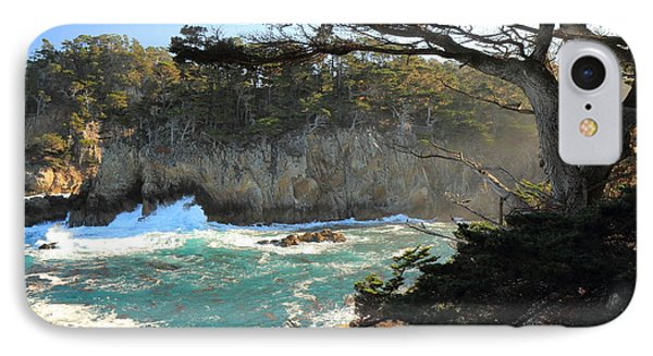 IPhone Case featuring the photograph Point Lobos Cypress by Scott Rackers