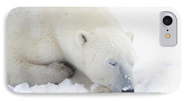 Polar Bear Ursus Maritimus Has His Eyes Phone Case by Richard Wear