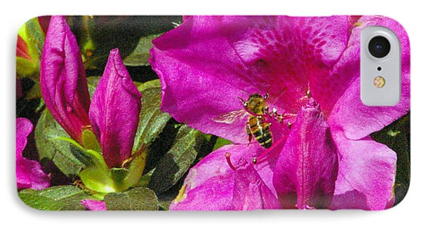 IPhone Case featuring the photograph Pollinating  by Brian Wright