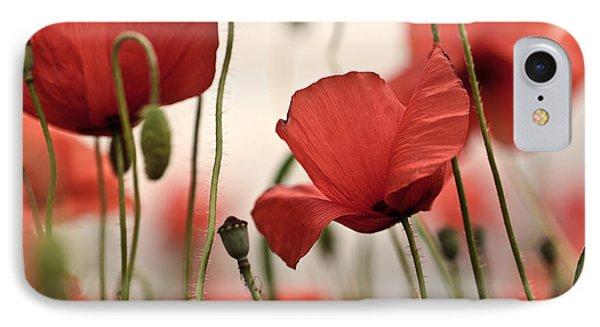 Poppy Flowers 04 IPhone Case
