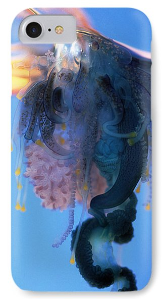 Portuguese Man-of-war Phone Case by Georgette Douwma