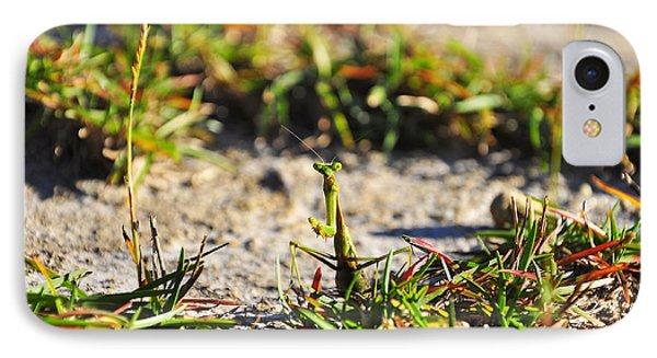 Praying Mantis IPhone Case by Al Powell Photography USA