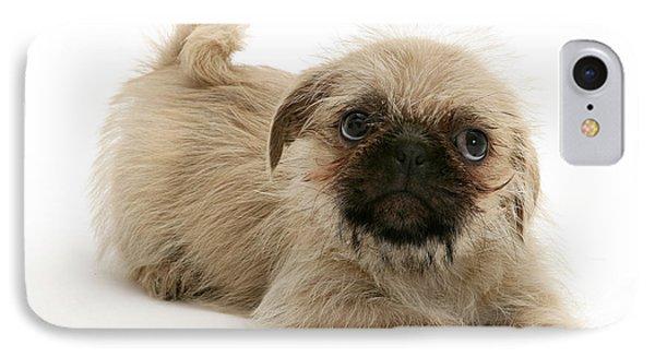 Pugzu And Pug Puppies Phone Case by Jane Burton
