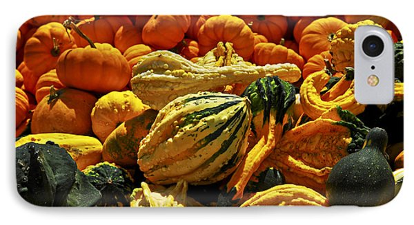 Pumpkins And Gourds Phone Case by Elena Elisseeva