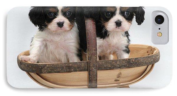 Puppies In A Trug Phone Case by Jane Burton