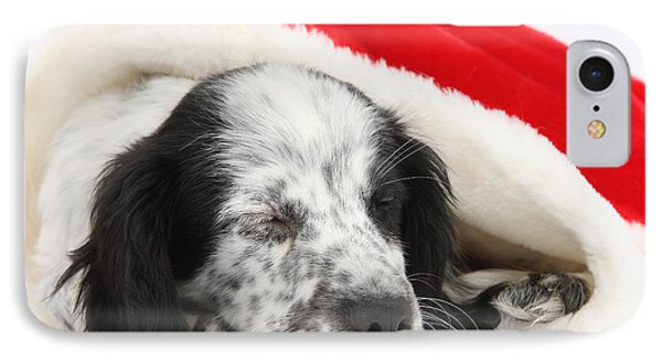 Puppy Sleeping In Christmas Hat Phone Case by Mark Taylor