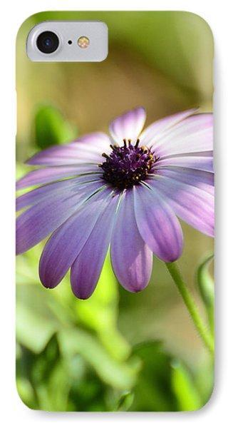 Purple Daisy  Phone Case by Saija  Lehtonen
