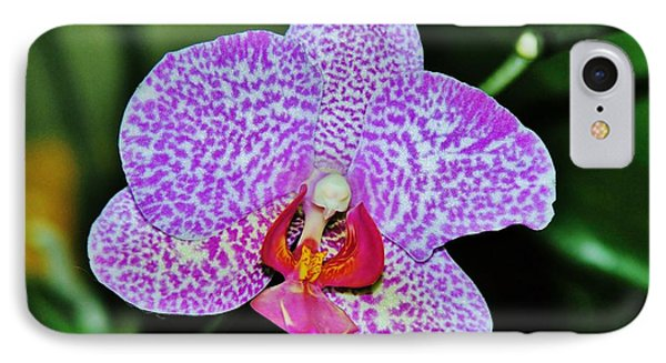 IPhone Case featuring the photograph Purple Orchid by Sherman Perry