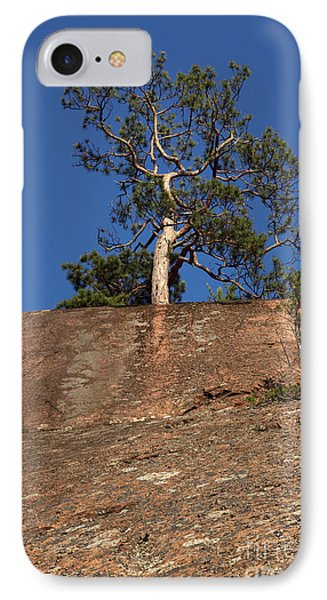 Red Pine Tree Phone Case by Ted Kinsman