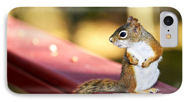 Red Squirrel On Railing IPhone Case by Elena Elisseeva