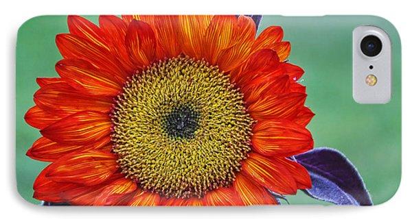 Red Sunflower  Phone Case by Saija  Lehtonen