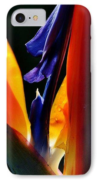 IPhone Case featuring the photograph Reginae Strelitzia by Werner Lehmann