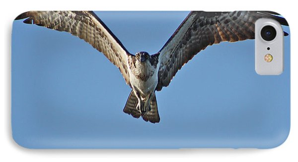 IPhone Case featuring the photograph Remember To Soar by Cathie Douglas