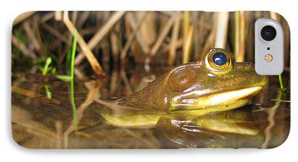 Resting Bullfrog Phone Case by Ted Kinsman